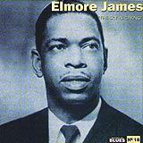 18 - 2007 - Masters Of Blues - Elmore James