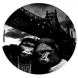 The Gorilla Deep EP